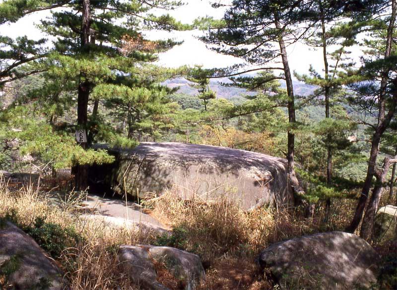 吉野山公園・神辺城跡・八丈岩・...